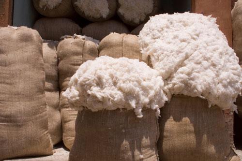 cotton sacks