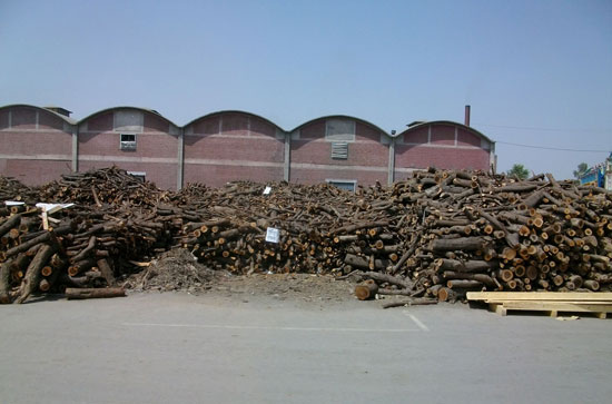 Wood for dyehouse boiler