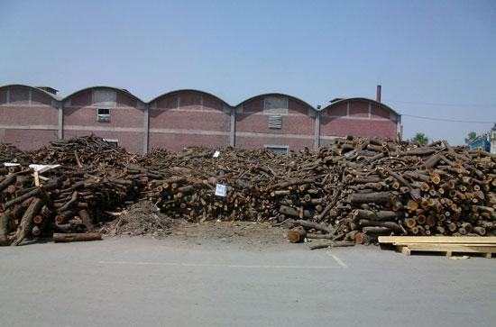 Wood for dyehouse boiler