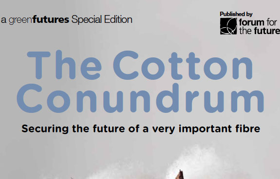 Cotton Conundrum