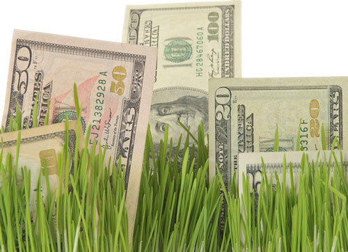 money and grass