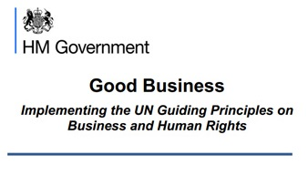 UN principles guidelines