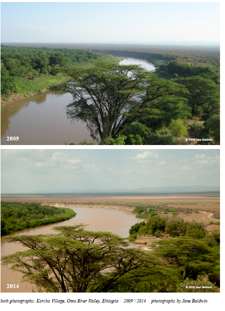 Before and after: Cleared by the Omo Valley Farm Cooperation