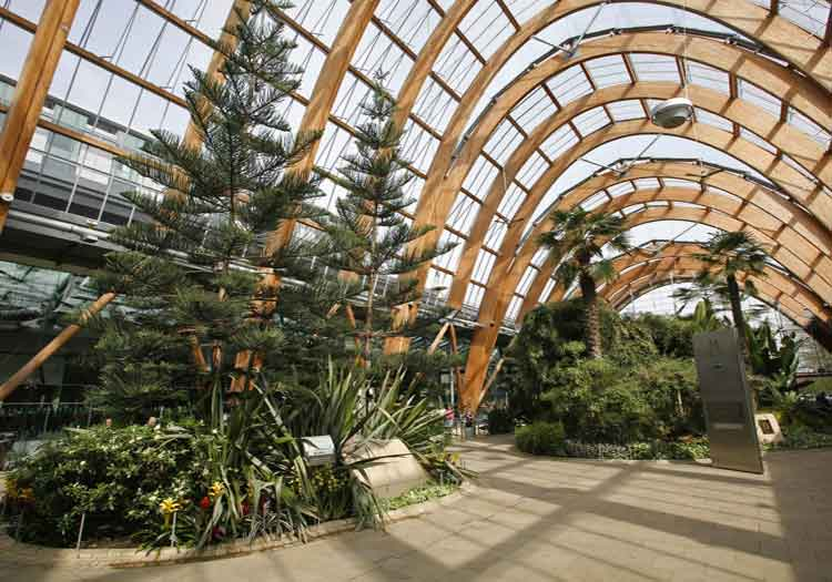 Sheffield Winter Gardens